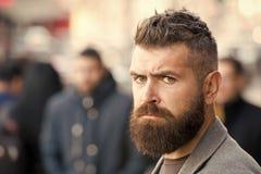Barbuto e fresco Le punte del barbiere mantengono la barba Aspetto dei pantaloni a vita bassa Barba alla moda e caduta e stagione fotografia stock libera da diritti