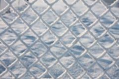 barbwire покрыло снежок детали Стоковая Фотография