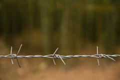 Barbwire Stock Photos