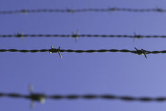 Barbwire Royalty Free Stock Images