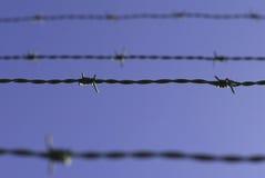 barbwire Стоковые Изображения RF