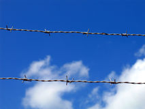 Barbwire Fotos de Stock Royalty Free