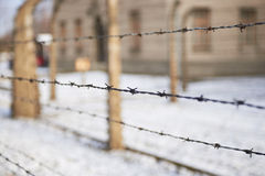 The barbwire. The barbed wire on the background of buildings Stock Images