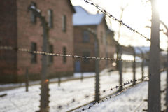 The barbwire #2. The barbed wire on a backgroung of buildings Royalty Free Stock Photo