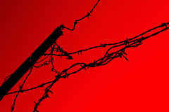 Barbwire barrier on red. An old barbed wire barrier on red background. A simple, abstract, symbolic picture Royalty Free Stock Photo