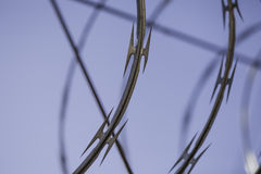 Barbwire close-up Royalty Free Stock Photo