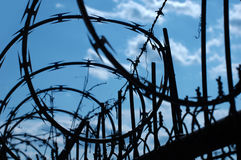 Barbwire de roulement photos libres de droits