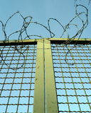 Barbwire door Stock Image
