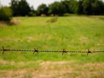 Barbwire e prado e árvores oxidados no fundo obscuro foto de stock