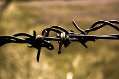 Barbwire Fence Stock Images