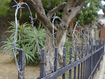 Barbwire fence Royalty Free Stock Images