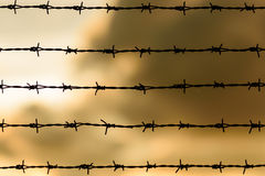 Barbwire fence Royalty Free Stock Photography