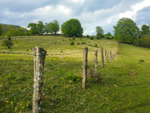 Barbwire fence in a fresh green grass field Royalty Free Stock Images
