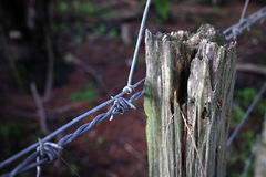 Barbwire Fence Stock Photography