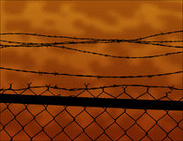 Barbwire Fence Stock Image