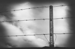 Barbwire in front of a cloudy sky black and white Stock Photos