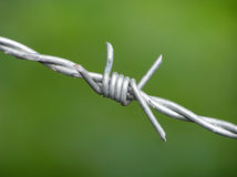 Barbwire on green background Royalty Free Stock Images