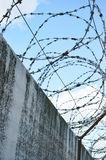 Barbwire and grey wall on sky background closeup Stock Photography