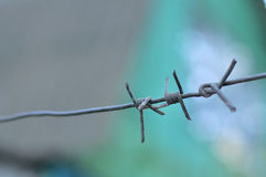 Barbwire Stock Photography