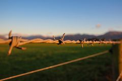 Barbwire marca o limite da terra, Nova Zelândia foto de stock royalty free