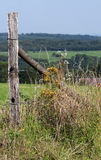 Barbwire in a meadow. Barbwire in the countryside bu a sunny day Stock Images