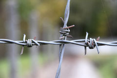 Barbwire nel memoriale del campo di concentramento di Dachau Immagine Stock