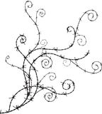 Barbwire ornament. Decorative barbwire ornament for your design Stock Images