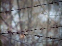 Barbwire in Pripyat Royalty-vrije Stock Afbeelding