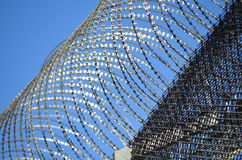 Barbwire on a prison wall Stock Photos