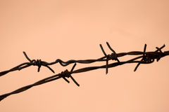 Barbwire-Sperre Stockbilder