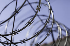 Barbwire spool. Over jail fence Stock Photo