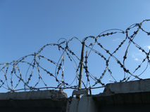 Barbwire sur la frontière de sécurité concrète Images libres de droits