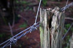 Barbwire-Zaun Stockfotografie