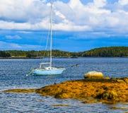 Barca abbandonata e un gabbiano fotografia stock libera da diritti