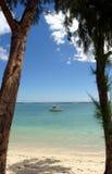 Barca attraverso gli alberi Fotografia Stock
