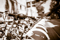 Barca bikes BW Royalty Free Stock Photo
