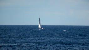 Barca che assale il mare archivi video
