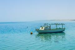 Barca degli uccelli Fotografia Stock Libera da Diritti