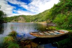 Barca del fiordo scenica Immagini Stock