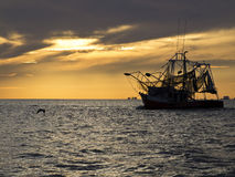 Barca del gamberetto che lascia al gamberetto Immagini Stock Libere da Diritti