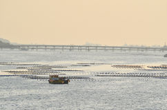 Barca del pescatore, impresa di piscicolture e pilastro al crepuscolo, Chonburi, Tailandia Fotografia Stock