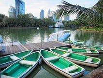 Barca dell'anatra nel tempo di giorno del parco immagine stock