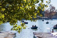 Barca di amore in un parco Fotografia Stock