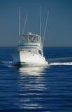Barca di lusso Immagine Stock