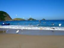 Barca e gabbiani nella spiaggia immagine stock libera da diritti