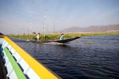 Barca e giardini di galleggiamento sul lago Inle Myanmar Immagini Stock Libere da Diritti