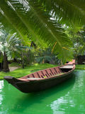 Barca e le palme Fotografia Stock