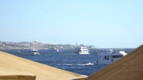 Barca elegante e graziosa di potere in corso Yacht ed isola di tropico video d archivio
