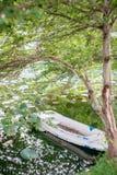 Barca in lago Immagine Stock Libera da Diritti