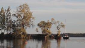 Barca sola che sta in un fiume calmo vicino alla foresta di autunno video d archivio
